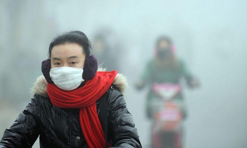 "Slavoj Zizek: Lessons From the ""Airpocalypse"""
