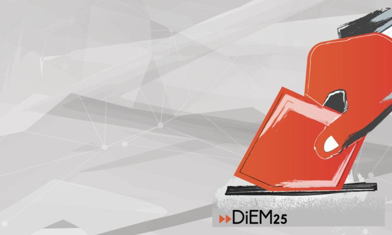 DiEM25 Electoral Wing