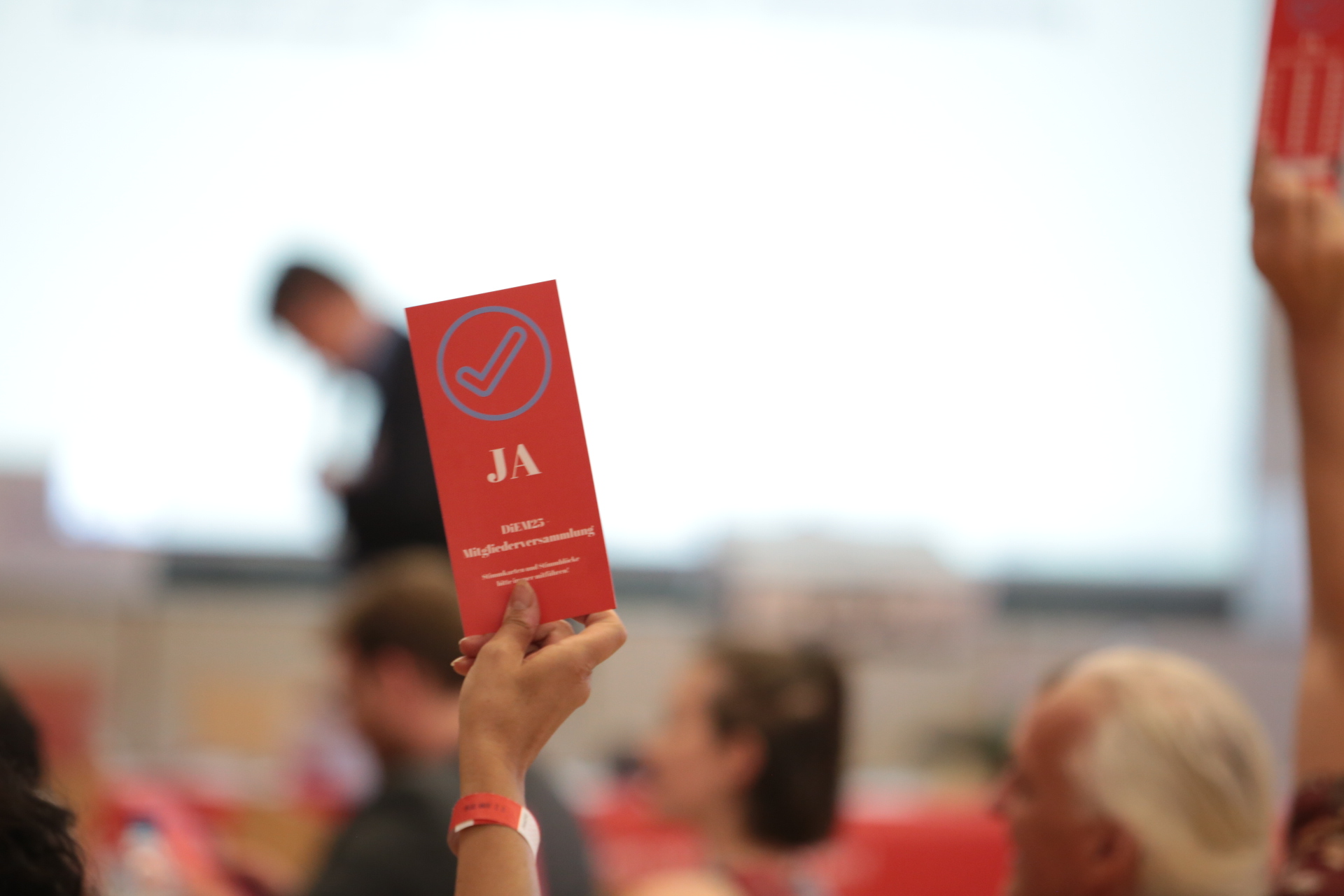 DiEM25 gründet deutschen Wahlflügel